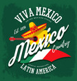 mexican sombrero and banjo banner vector image