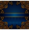 Luxury banner border vector image