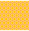 Octagon Pattern vector image