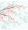 Watercolor Background with Blooming Apple Flowers vector image