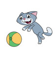 kitten is playing with ball vector image