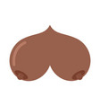 Bosom african american isolated boobs on white vector image