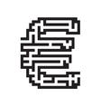 Euro business flat black maze vector image vector image