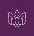 line flower letter m beauty logo vector image