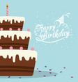 happy birthday cake chocolate confetti card vector image