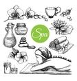 Hand Drawn Spa Treatment Set vector image