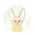 cartoon fox Fenech vector image