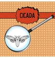 Insect in magnifier cicada Cicadidae Sketch of vector image