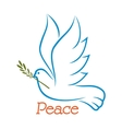 Dove of peace with olive branch vector image