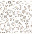 doodle pets pattern vector image