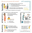 Left-handed Infographic vector image