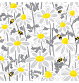 bees and chamomile vector image vector image