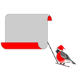 A Christmas bullfinch with a big blank paper vector image