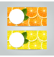 banners set with citrus fruits vector image