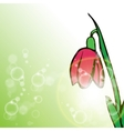 Flower on green background with rays vector image