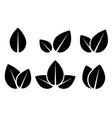 Set of black leaf icons vector image