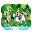 Three lemurs being happy by the river vector image