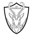 animal of africa gazelle head vector image