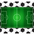 checkered field vector image