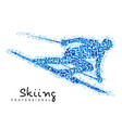 winter sports - skiing vector image