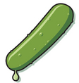 pickle vector image vector image