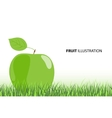 ripe apple vector image
