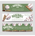 Baseball team banners vector image