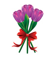 Tulip bouquet with red bow2 vector image