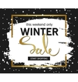 Winter sale background Brush stroke with golden vector image