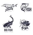 set logo sea fish vector image