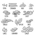 set of spices mortar and pestle vintage vector image