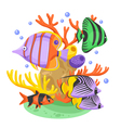 Exotic Tropical Fish vector image