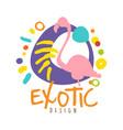 exotic logo design with flamingo bird summer vector image