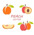 flat peach icons set vector image vector image