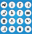set of 16 editable plant icons includes symbols vector image