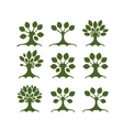 Set of art trees for your design vector image vector image