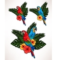 Macaw and palm leaves vector image
