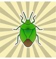 Insect sticker shield bug Palomena prasina vector image
