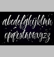 alphabet brush lettering vector image