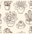 pattern with houseplants vector image