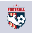 Vintage american color football soccer vector image