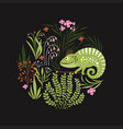 exotic with chameleon and tropical fl vector image vector image