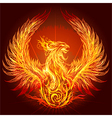 The Phoenix vector image