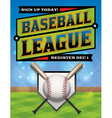 Baseball League Flyer vector image