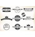 Satisfaction Guarantee Label and Vintage Premium vector image