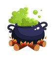halloween caldron cauldron with boiling green vector image