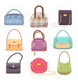 colourful ladies handbags woman accessories vector image