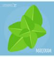 marjoram flat design icon vector image
