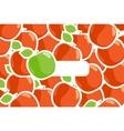 ripe apples vector image