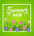 summer background with flowers vector image